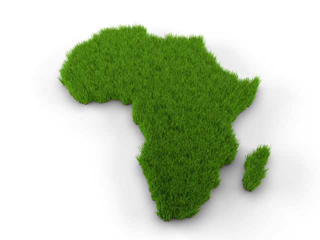 Africa map made of grass. High quality 3D illustration.